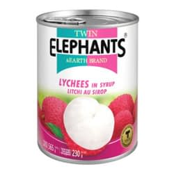 TWIN ELEHPHANT LYCHEES IN SYRUP 565g
