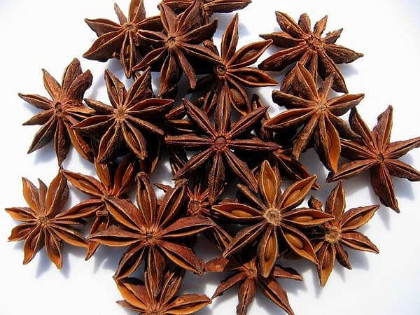 Sanam STAR ANISEED 400g